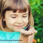header - girl holding butterfly 1920 x1280 with text